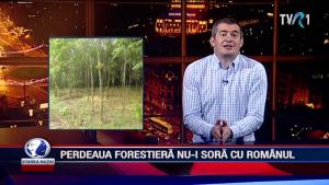 PERDEAUA FORESTIERĂ NU-I SORĂ CU ROMÂNUL
