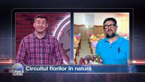 Circuitul florilor în natură