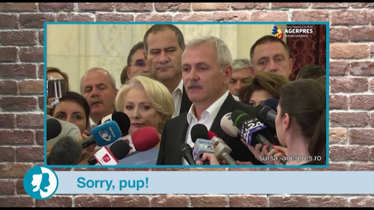 Sorry, pup!