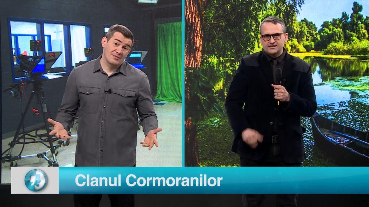 Clanul Cormoranilor