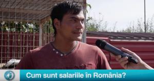 Vax Populi: Cum sunt salariile în România?