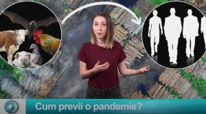 Cum previi o pandemie?